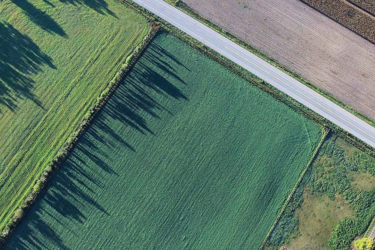 agriculture, cropland, farm